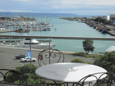 View from our Napier apartment balcony