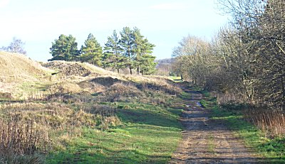 Cotswold Way at Painswick Common
