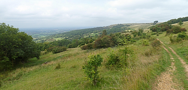 Cotswold Way at Westbury Hill