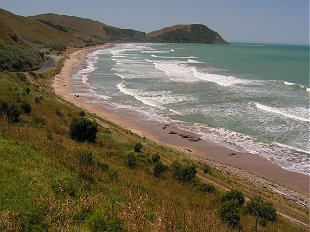 Beach just north of Gisborne
