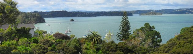 The view over Bay of Islands from the Grundy's deck