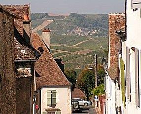 View over vineyards from Sancerre
