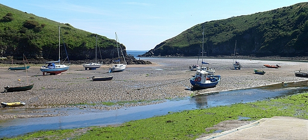 Solva Harbour at low tide