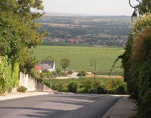 The view down to Epernay from Hautvillars